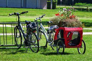 bike-1622183_1920